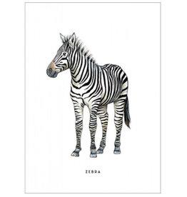 Meesie & Bintje Kaart zebra