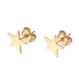Oorknopjes rvs / stainless steel goud sterren