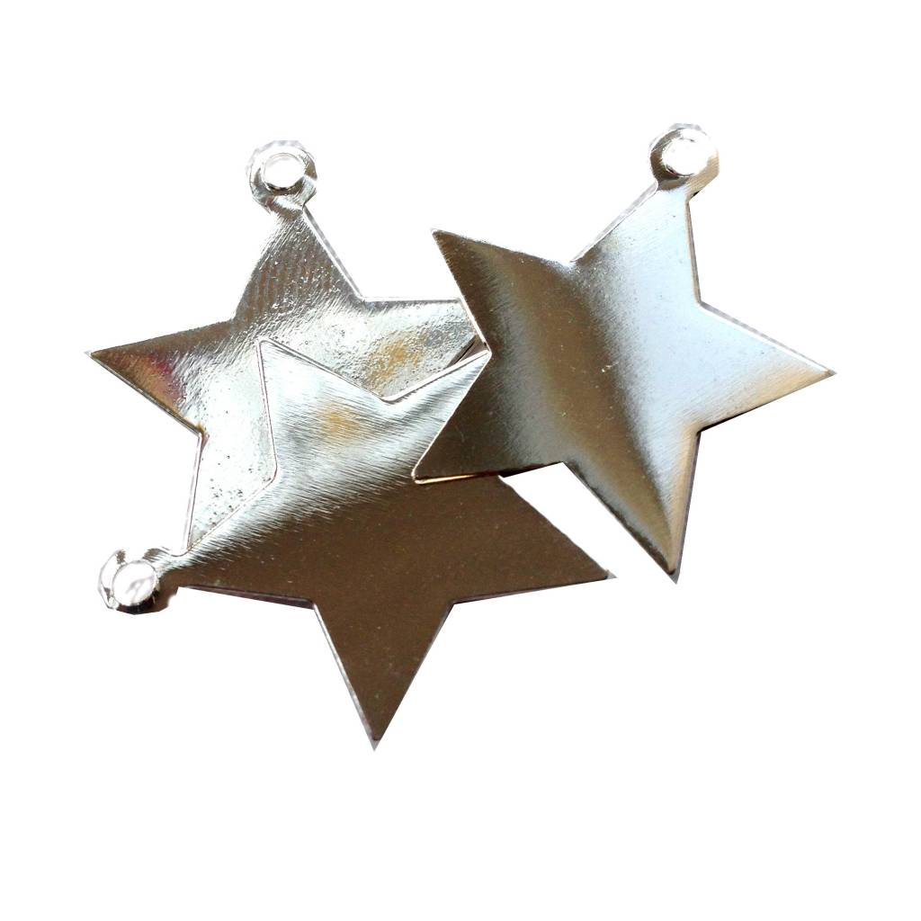 Bedel / tag zilveren ster (1x)