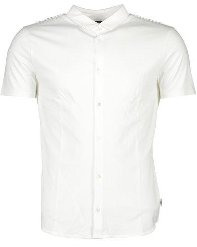 Armani Shirt Wit