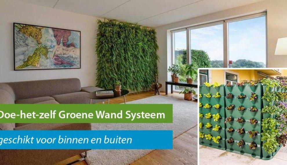 Groene wanden voor binnen en buiten van Minigarden
