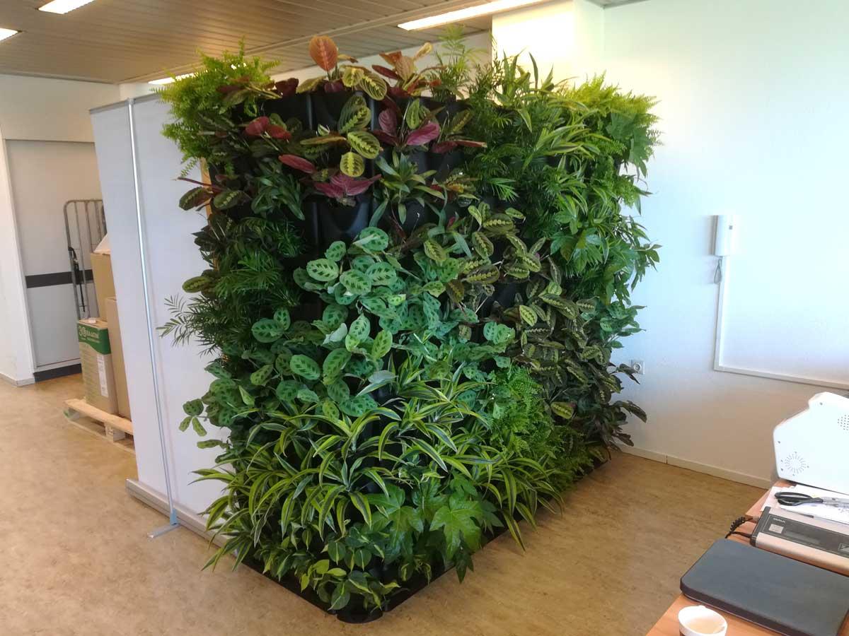 Minigarden  wand bij de Groene Hoed