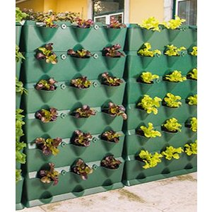 Minigarden Vertical  Groene wandmodule 3-delige  starterset
