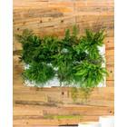 Minigarden Vertical  0.75m2 combinatie pakket