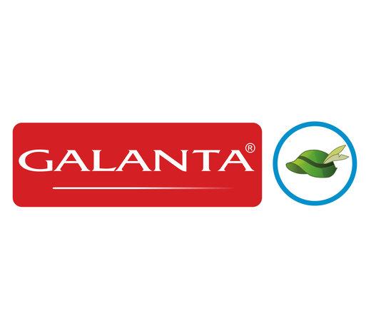 Galanta Green Hat