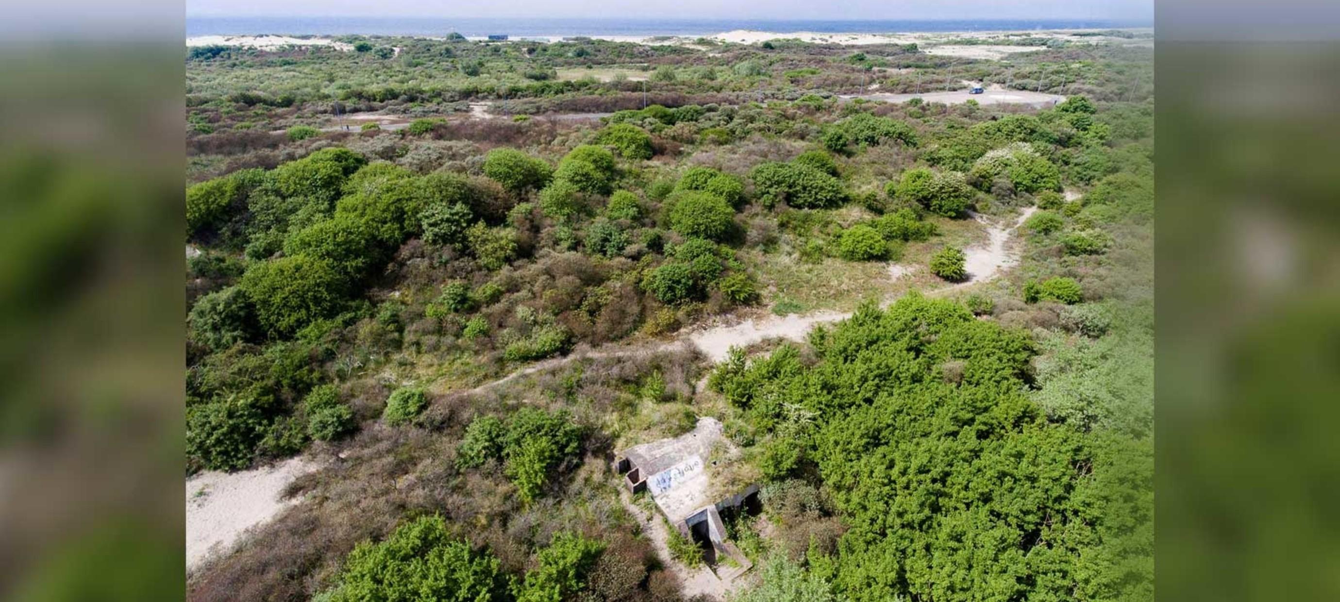 Logeren in dé ecologische Atlantikwall-bunker van Hoek van Holland