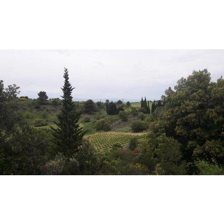 Domaine Calmel & Joseph Blanquette de Limoux Brut