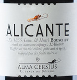 Alicante by Alma Cersius 2016