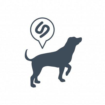 Ontwormen van je hond