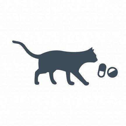 Medicijnen & Supplementen Kat