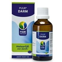 PUUR Intestine (Darm)