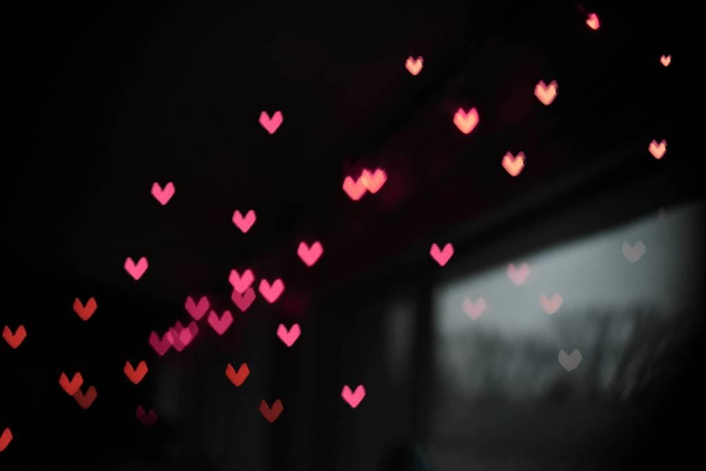 Valentijn met jouw huisdier!