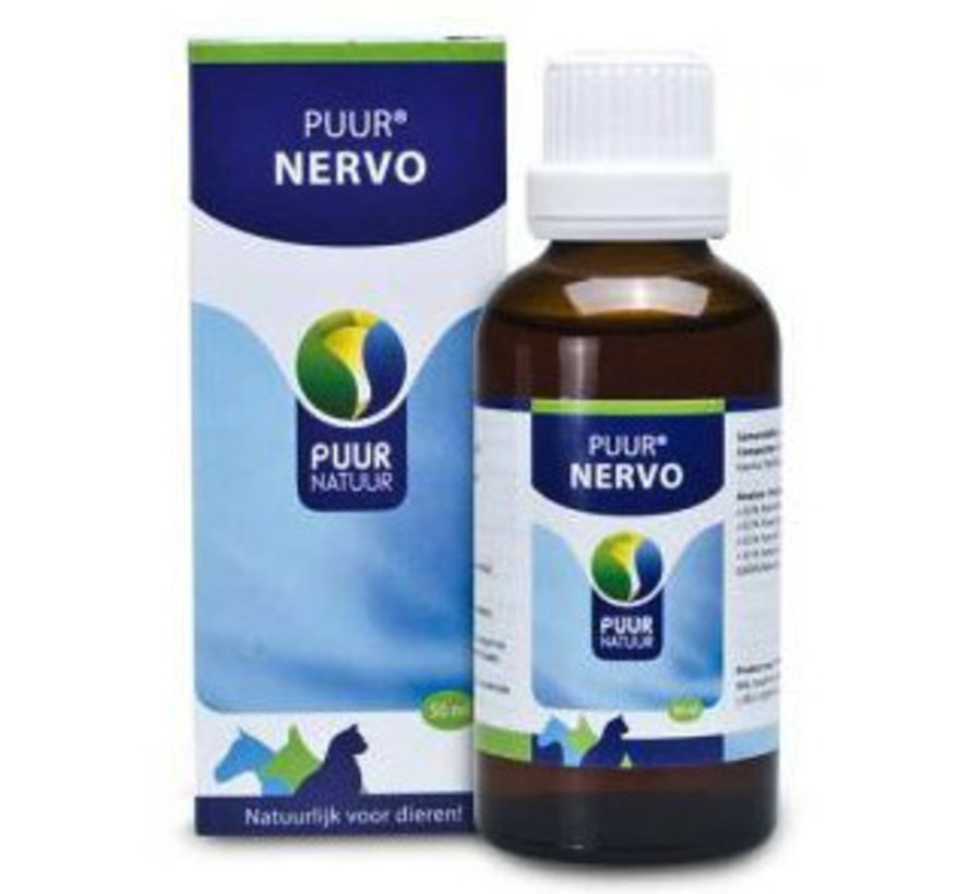 PUUR Nervo