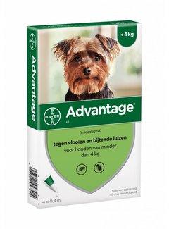 Advantage Advantage Hond