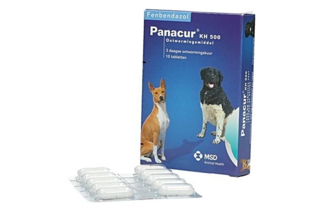 panacur giardia dosering