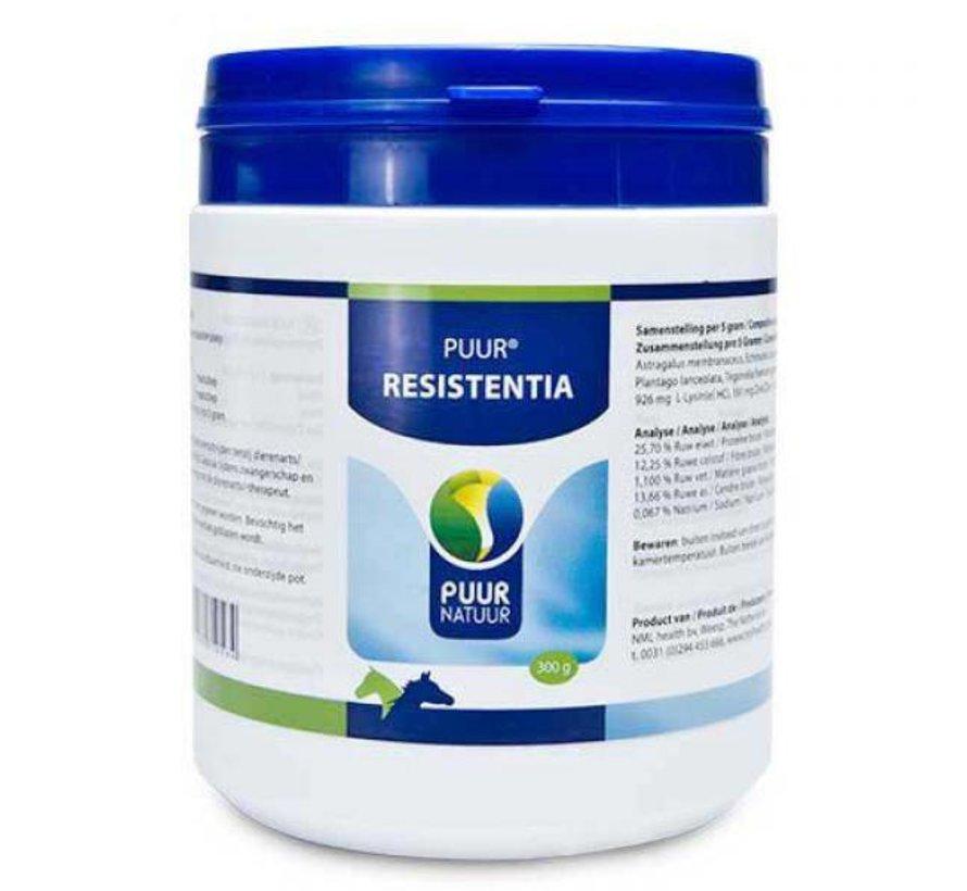 PUUR Resistentia (Weerstand) Paard