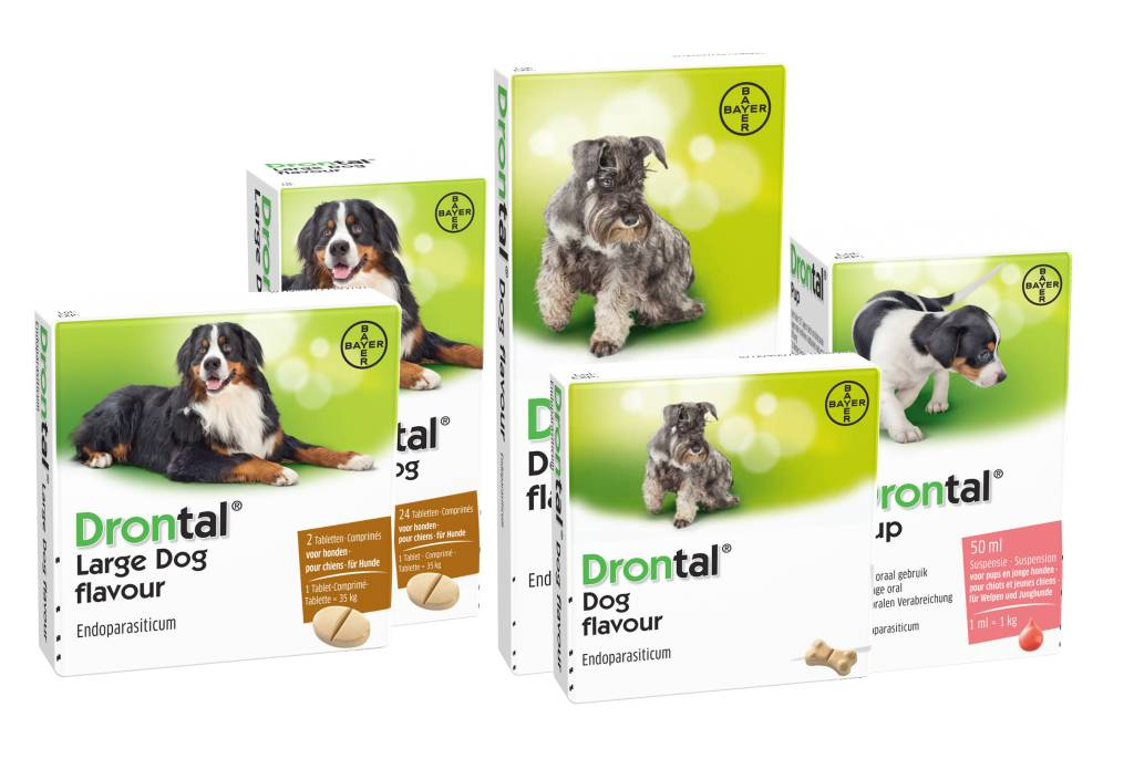 Drontal Large Dog Flavour ontwormingsmiddel 2 Tabletten