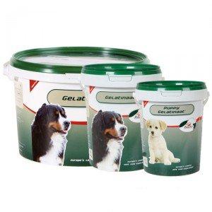 Primeval Gelatinaat voor de hond 2 kg