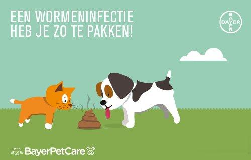 Besmetting, klachten & behandeling van worminfecties