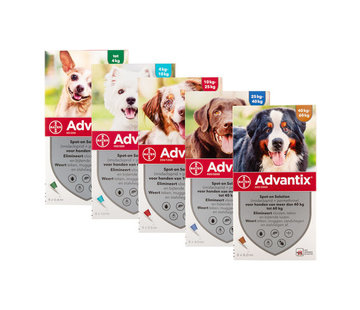 Advantix Advantix Hond