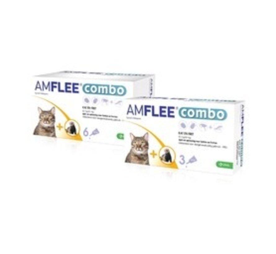 Amflee Combo Kat/Fret