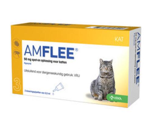 Amflee Amflee Kat