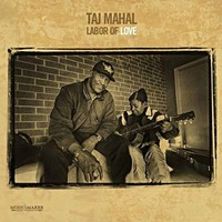 Labor of Love - Taj Mahal