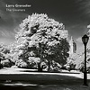 ECM Records Larry Grenadier - The Gleaners