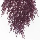 tak glitter paars ca. 40cm