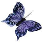vlinder blauw per 10