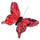 vlinder rood per 10