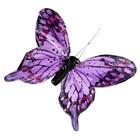 vlinder paars per 10