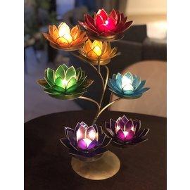 Chakra Lotus Display