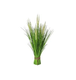 EUROPALMS EUROPALMS Wheat Bunch Early Summer 65cm