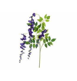 EUROPALMS EUROPALMS Wisteria Branch, purple