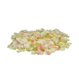 EUROPALMS EUROPALMS Rose Petals, yellow/pink, 500x