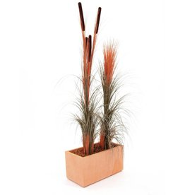 EUROPALMS EUROPALMS Reed grass, light brown, 127cm