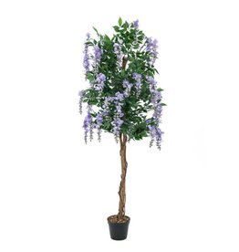 EUROPALMS EUROPALMS Wisteria, purple, 180cm