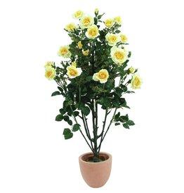 EUROPALMS EUROPALMS Rosebush, light-yellow,140cm