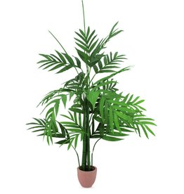 EUROPALMS EUROPALMS Areca palmtree, 230cm