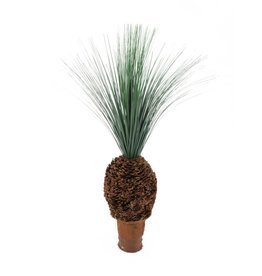 EUROPALMS EUROPALMS Rain grass palm with nodule trunk, 90cm