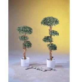EUROPALMS EUROPALMS Bonsai wood tree, 180cm