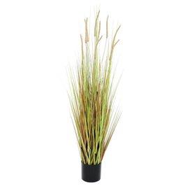 EUROPALMS EUROPALMS Fountain grass bush, 120cm