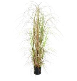EUROPALMS EUROPALMS Grass bush, 150cm