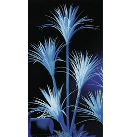 EUROPALMS EUROPALMS Yucca palmtree, uv-white, 180cm