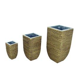 EUROPALMS EUROPALMS Design flowerpot, hyazinth, 60 cm