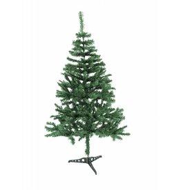 EUROPALMS EUROPALMS Fir tree, 210cm