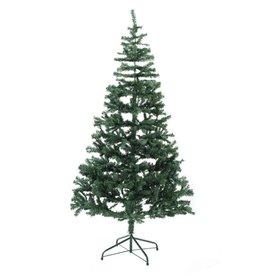EUROPALMS EUROPALMS Fir tree, 240cm