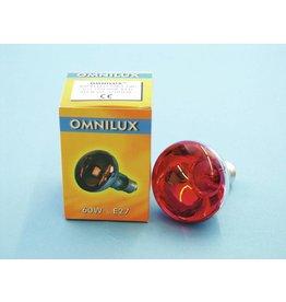 OMNILUX OMNILUX R80 230V/60W E-27 red