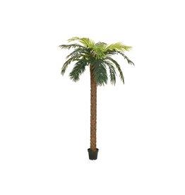 EUROPALMS EUROPALMS Phoenix palm deluxe, artificial plant, 250cm